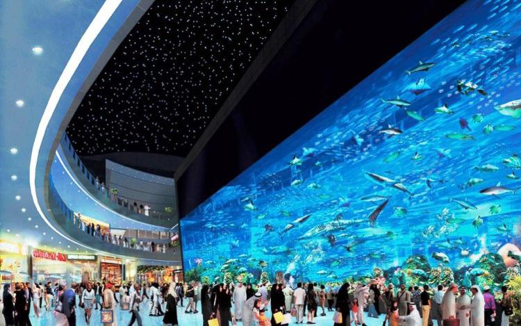 el dubai mall es ya uno de los centros comerciales ms grandes del planeta sino que tambin es el hogar de uno de los mayores acuarios del mundo