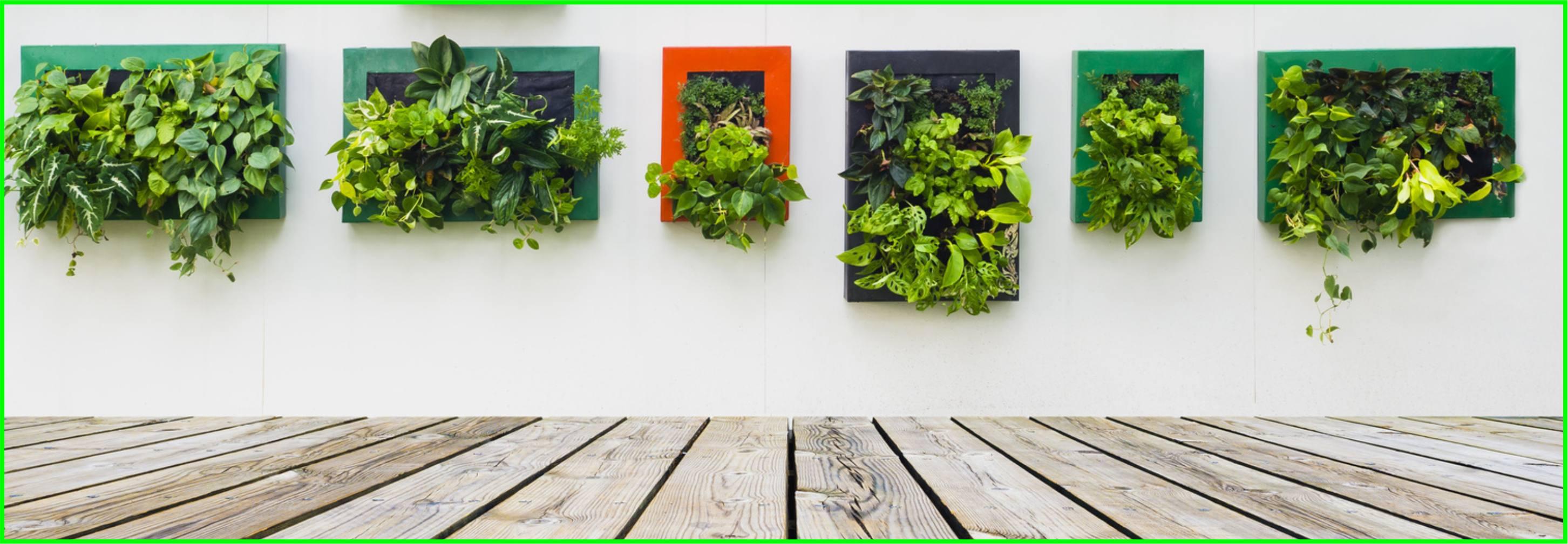 C mo hacer un huerto vertical parques alegres i a p for Historia de los jardines verticales