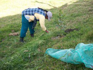cuidar el suelo