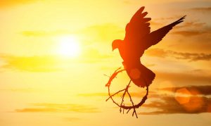 paz como valor