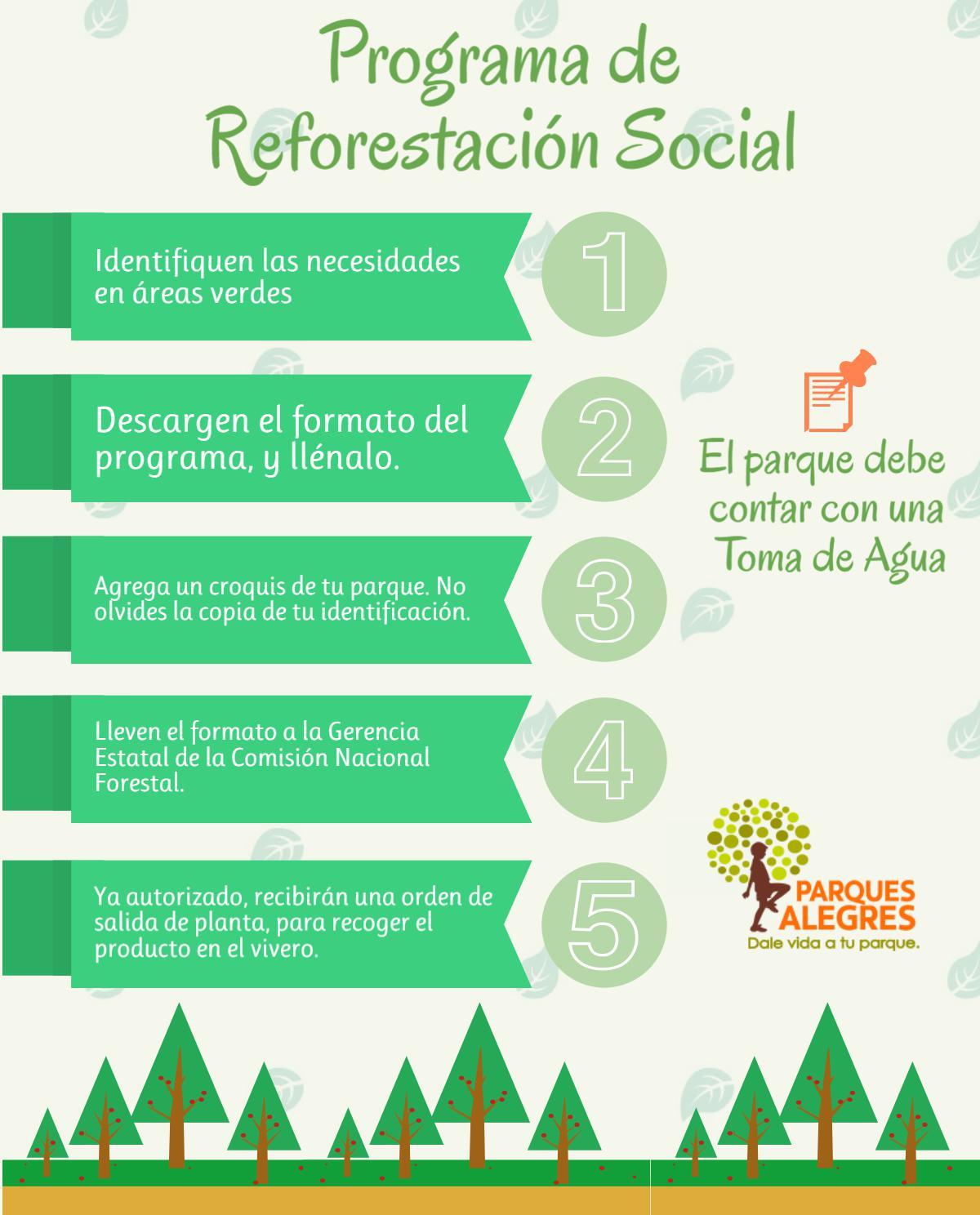 programa reforestación