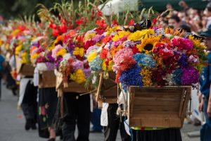 celebración a la flor