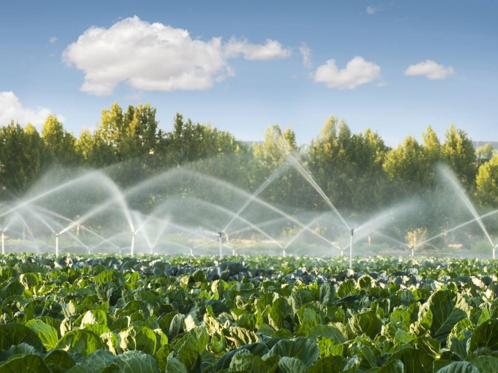 Sistemas de riego eficientes parques alegres i a p for Sistema de riego por aspersion para jardin