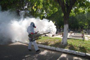 importancia de fumigar