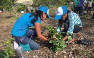 que es desarrollo sustentable