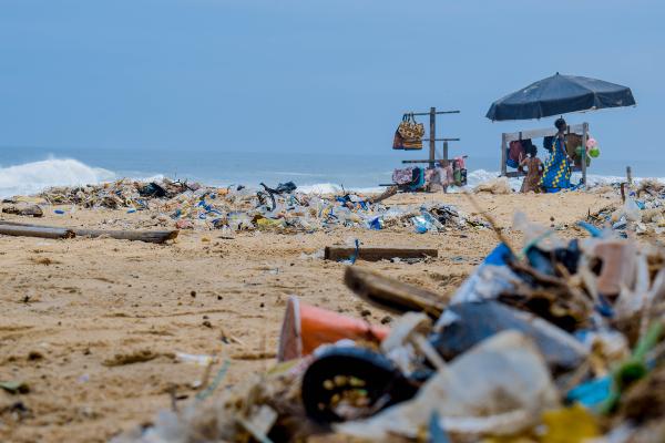 la contaminacion ambiental resumen