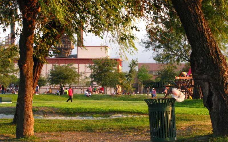 utilidad los árboles en las zonas urbanas
