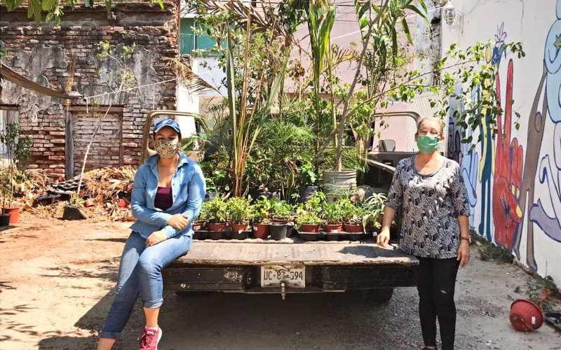 Día del Árbol en México