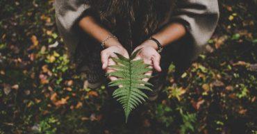 tipos de medio ambiente y sus caracteristicas