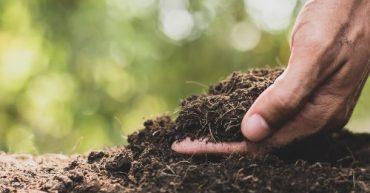 dia internacional de la conservacion del suelo