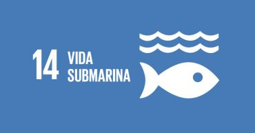 ods vida submarina