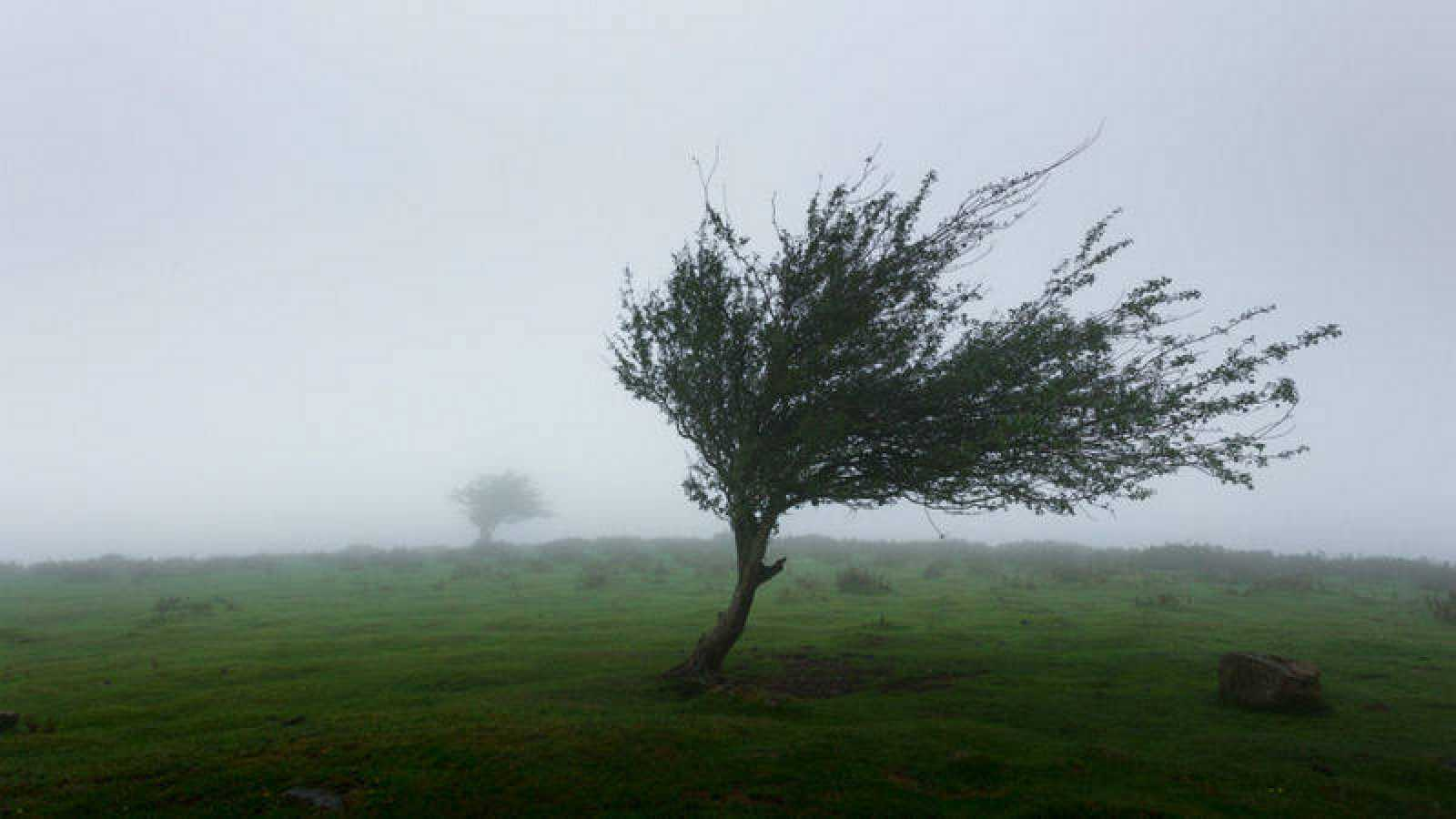 recomendaciones ante fuertes vientos