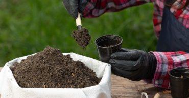 como hacer abono organico