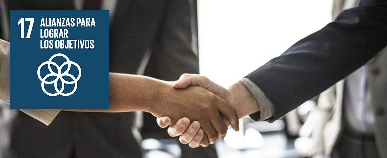 alianzas para lograr los objetivos