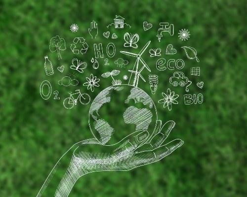 conciencia ecologica